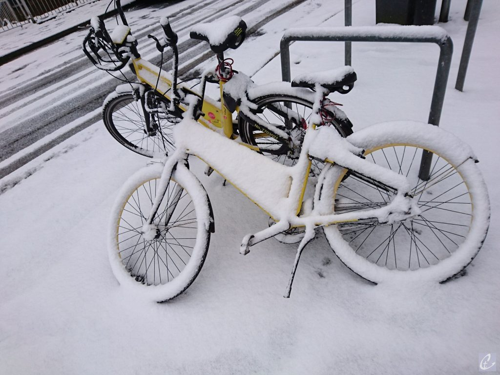 Bicycles in the snow | Jewels of all kind
